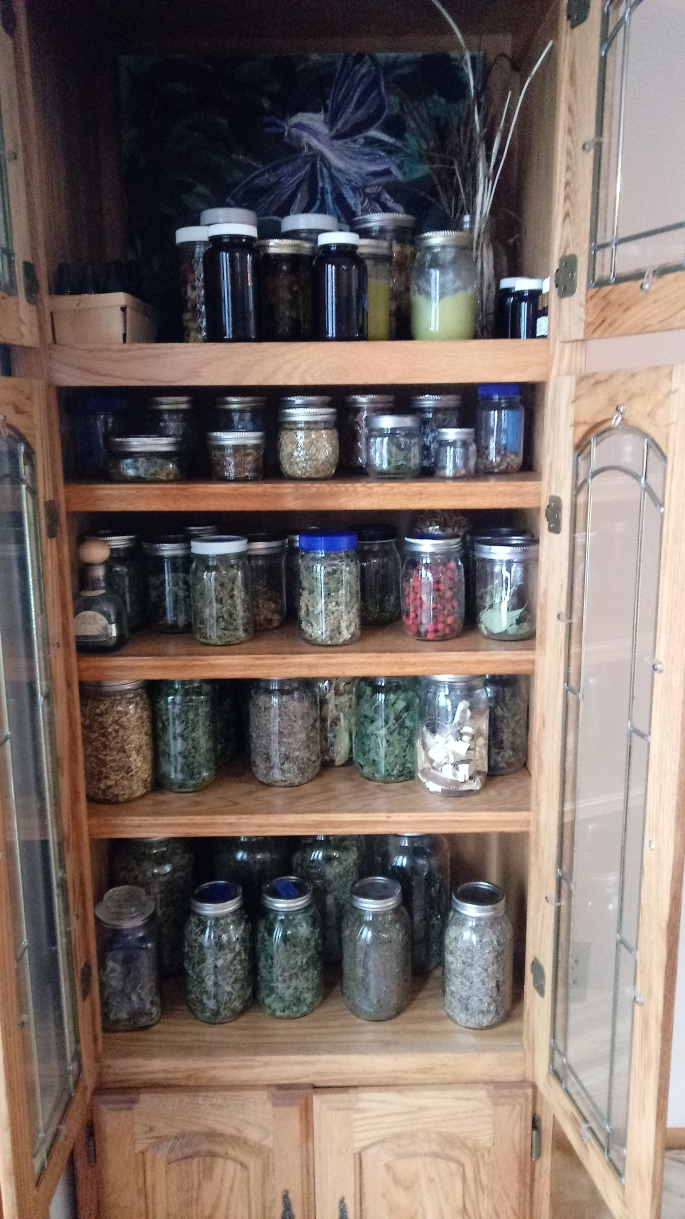 Glass jars filled with tinctures, salves and herbs for tea.