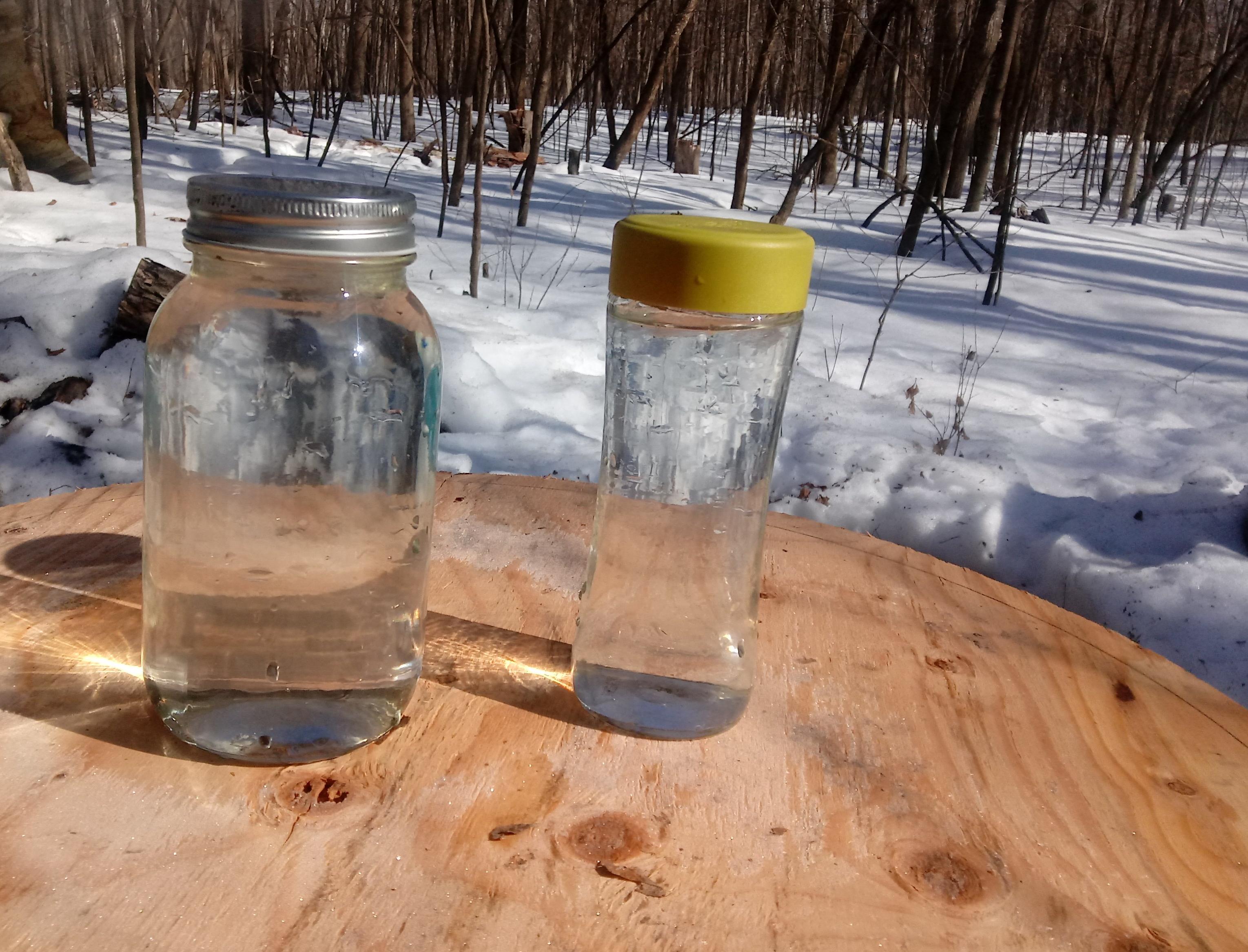 Jars of Sap